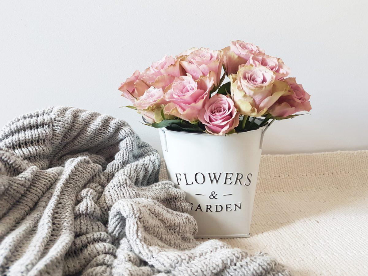 Jak Przedłużyć Trwałość Ciętych Róż Miscatalinapl Blog