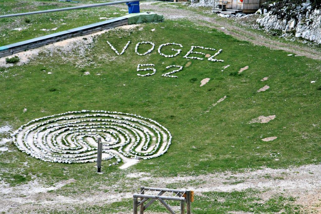Vogel Słownia